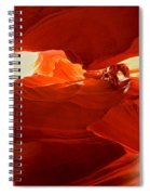 Antelope Aglow Spiral Notebook