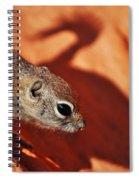 Antelope Ground Squirrel II Spiral Notebook