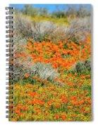 Antelope Valley Poppies Spiral Notebook