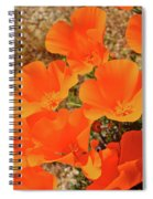 Antelope Valley Poppy Portrait Spiral Notebook