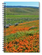 Antelope Valley Poppy Reserve Spiral Notebook