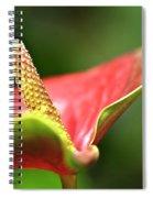 Anthurium Blossom Spiral Notebook