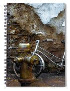 Antique Fire Hydrant 2 Spiral Notebook