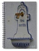 Antique Founain Spiral Notebook
