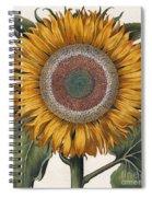 Antique Sunflower Print Spiral Notebook