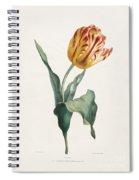 Antique Tulip Print Spiral Notebook