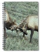 Antler To Antler Spiral Notebook