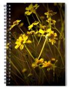 Anza Borrego Desert Sunflower 4 Spiral Notebook