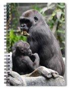 Apes Spiral Notebook