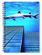 Apex Predator Spiral Notebook