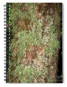 Appalachian Arbor Flora Spiral Notebook