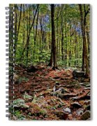 Appalachian Trail Clearing Spiral Notebook