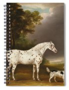 Appaloosa Horse And Spaniel Spiral Notebook