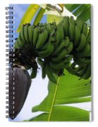 Apple Bananas Spiral Notebook