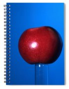Apple Before Bullet Impact Spiral Notebook