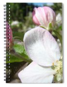 Apple Blossom Artwork Spring Apple Tree Baslee Troutman Spiral Notebook