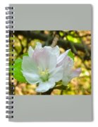 Apple Blossom Close-up Spiral Notebook