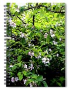 Apple Blossom Digital Painting Spiral Notebook