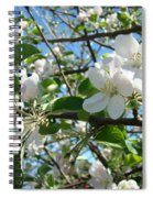 Apple Blossoms Art Prints 60 Spring Apple Tree Blossoms Blue Sky Landscape Spiral Notebook