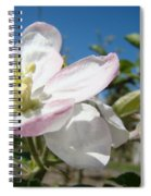 Apple Blossoms Art Prints Canvas Blue Sky Pink White Blossoms Spiral Notebook
