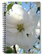 Apple Blossoms Art Prints Canvas Spring Tree Blossom Baslee Troutman Spiral Notebook