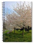 Apple Blossoms Spiral Notebook