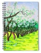 Apple Garden In Blossom Spiral Notebook