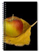 Apple Harvest Autumn Leaf Spiral Notebook
