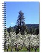 Apple Orchard In Bloom Spiral Notebook