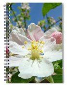 Apple Tree Blossom Art Prints Springtime Nature Baslee Troutman Spiral Notebook