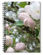 Apple Tree Blossoms Art Prints Apple Blossom Buds Baslee Troutman Spiral Notebook