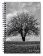 Apple Tree Bw Spiral Notebook