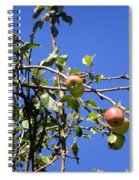 Apple Tree With Apples And Flowers. Amazing Nature Spiral Notebook
