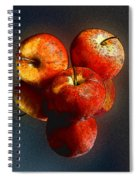 Apples And Mirrors Spiral Notebook