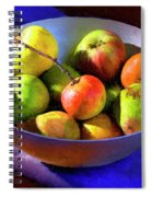 Apples And Pears Spiral Notebook