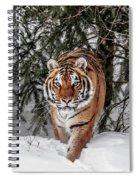 Approaching Tiger Spiral Notebook