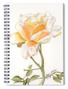 Apricot Rose Spiral Notebook