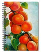 Apricots In The Garden Spiral Notebook
