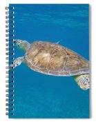 Aqua Glider Spiral Notebook