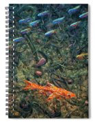 Aquarium 2 Spiral Notebook