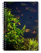 Aquarium Fish And Plants In Zoo Spiral Notebook