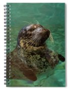 Aquarium Seal  Spiral Notebook