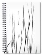 Aquatic Reeds Black And White Spiral Notebook