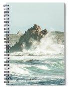 Aquatic Spray Spiral Notebook