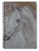 Arab Stallion In The Desert Spiral Notebook