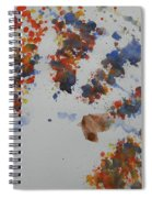 Arab Spring Two Spiral Notebook