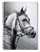 Arabian Beauty Spiral Notebook