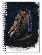 Arabian Spiral Notebook