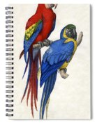 Aracangua And Blue And Yellow Macaw Spiral Notebook