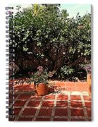 Arboletes 2 Spiral Notebook